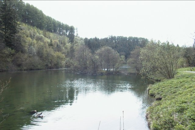 Staindale Lake Dalby Forest - geograph.org.uk - 5405