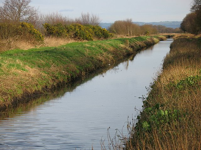 The Glastonbury Canal - geograph.org.uk - 676952