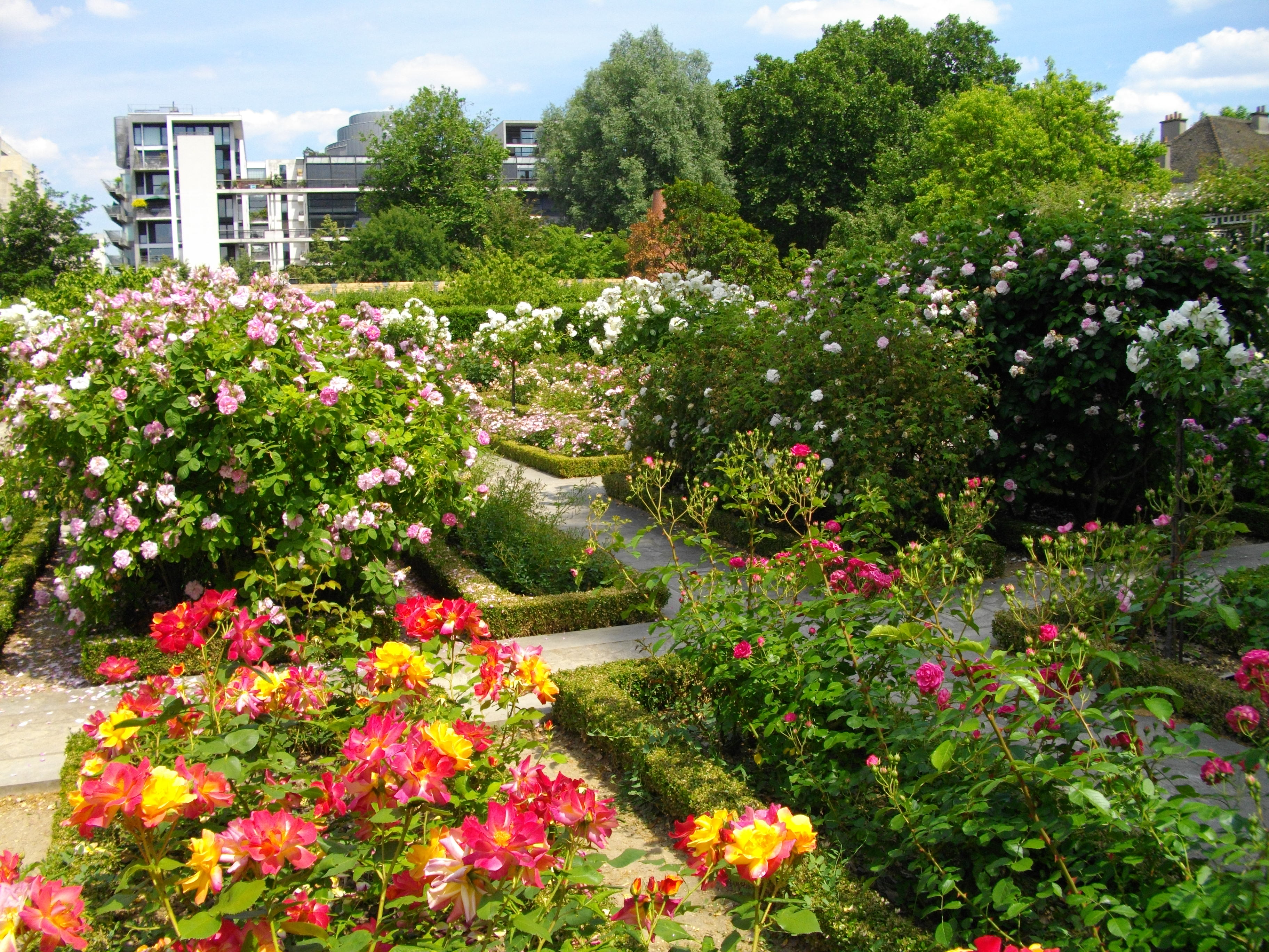 file vue du jardin avec roses jpg wikimedia commons