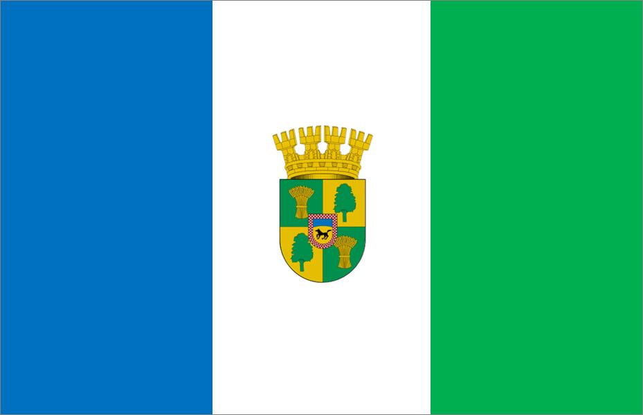 File:Bandera De Cabrero (Chile).png