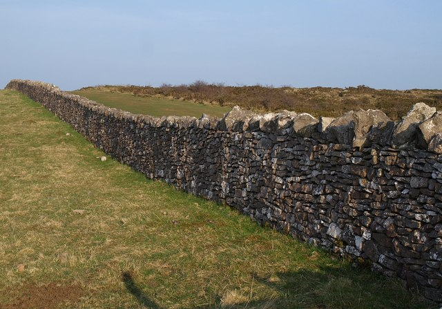 Drystone wall, Compton Hill - geograph.org.uk - 1219978