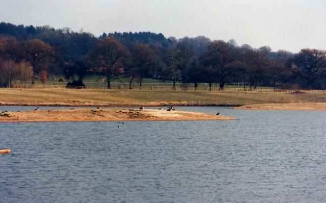 Finchampstead - geograph.org.uk - 294