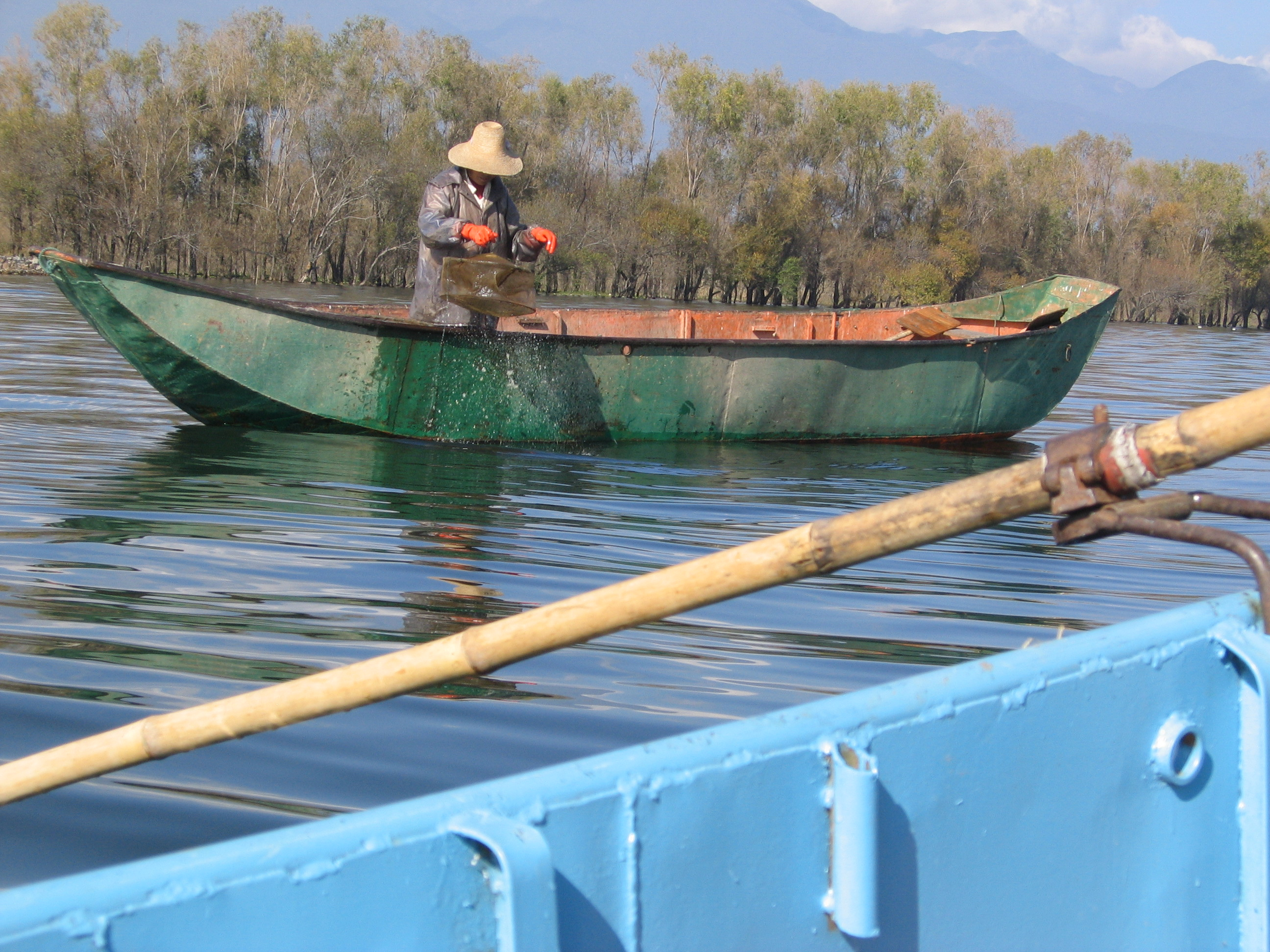 File freshwater shrimp for Virginia saltwater fishing regulations