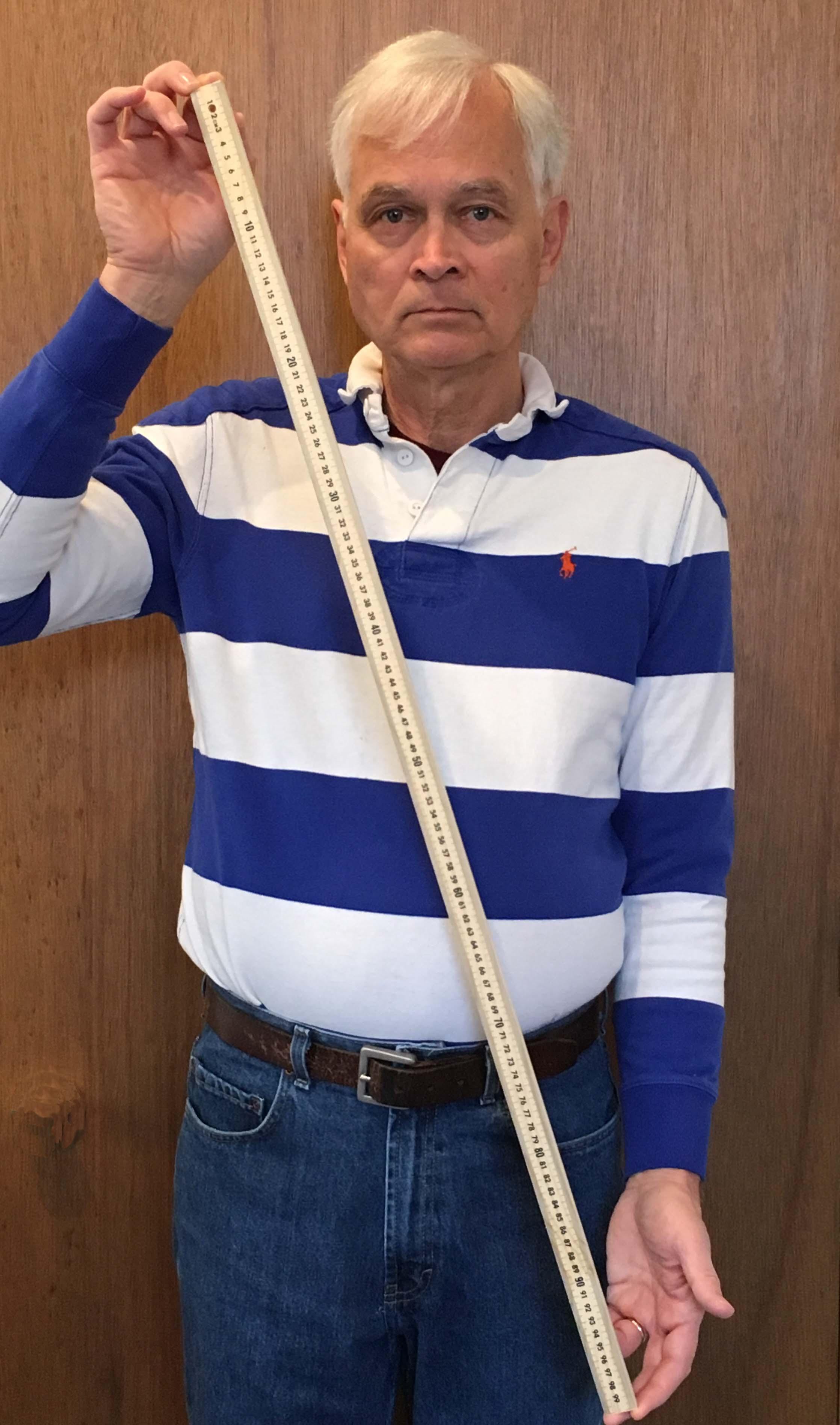 picture regarding Printable Meter Sticks identified as Meterstick - Wikipedia