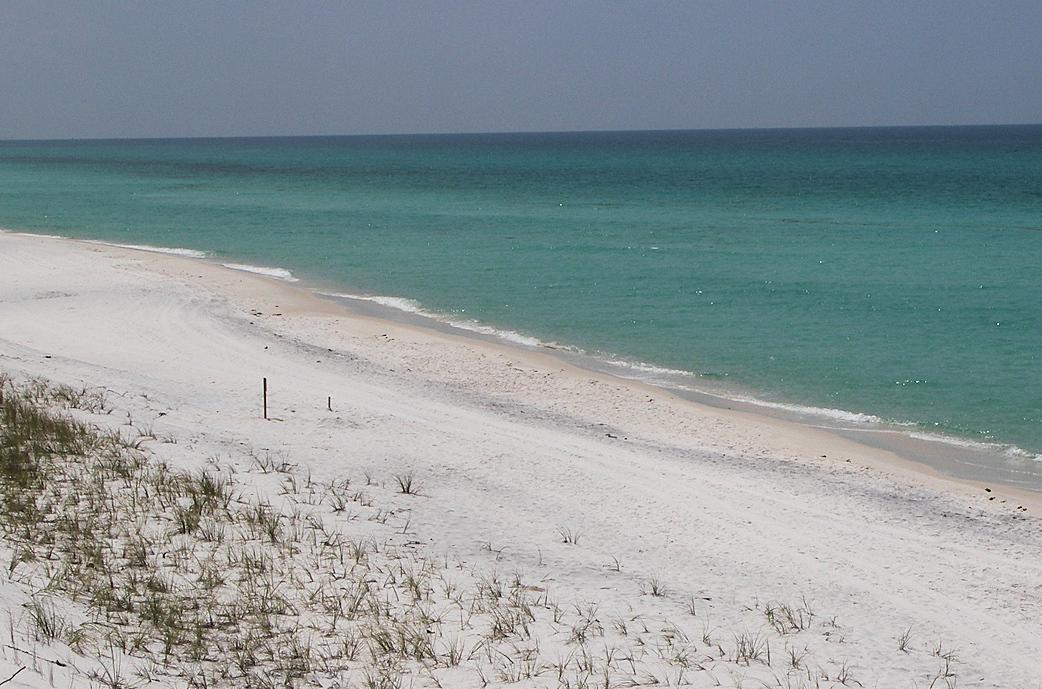 Grayton Beach State Park Campground Santa Rosa Beach Florida