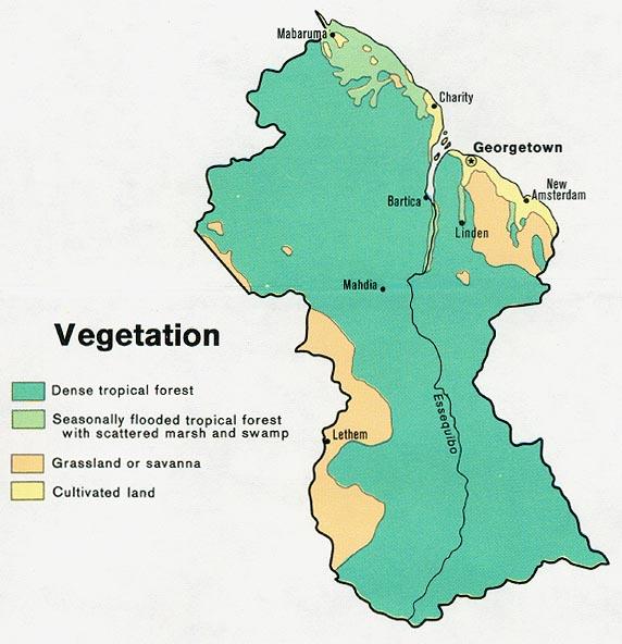 Vegetação Da Guiana Wikiwand - Argentina vegetation map