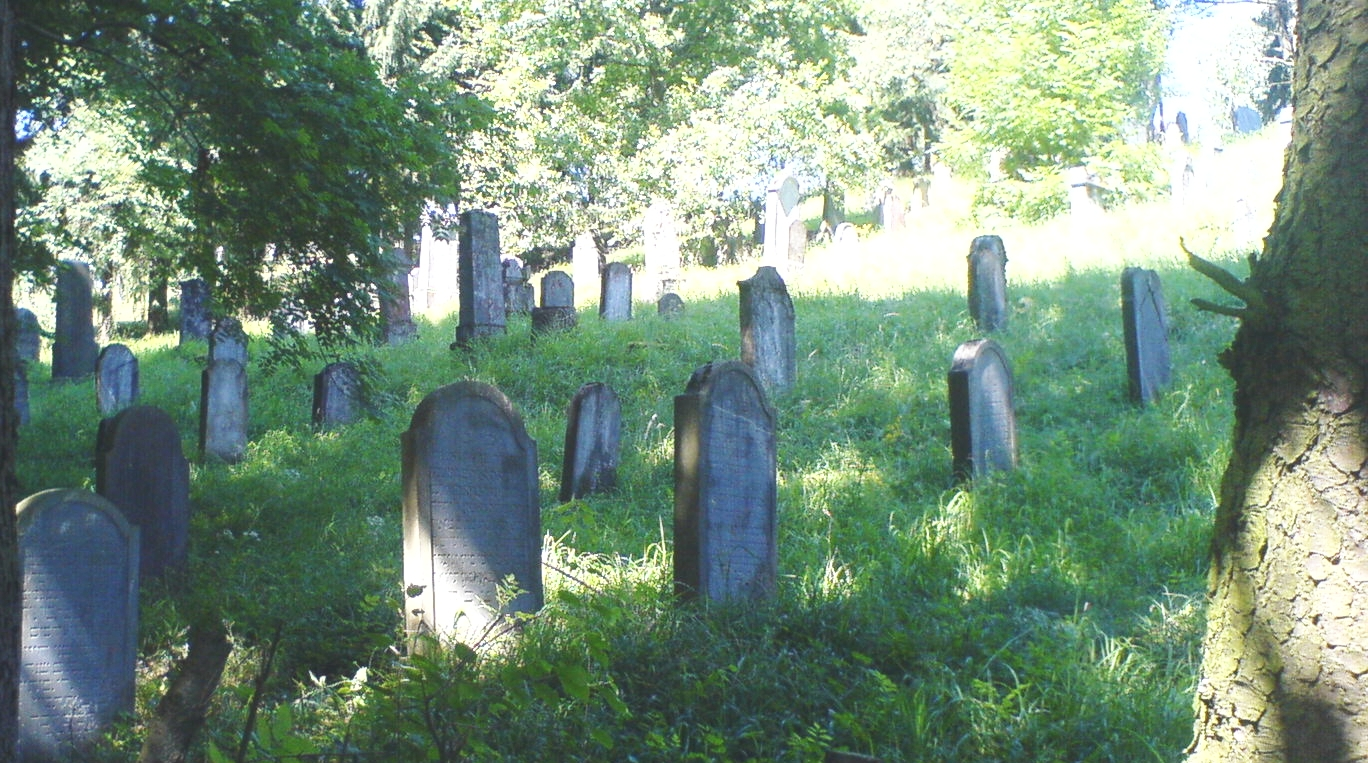https://upload.wikimedia.org/wikipedia/commons/d/d9/J%C3%BCdischer_Friedhof_Solms.jpg