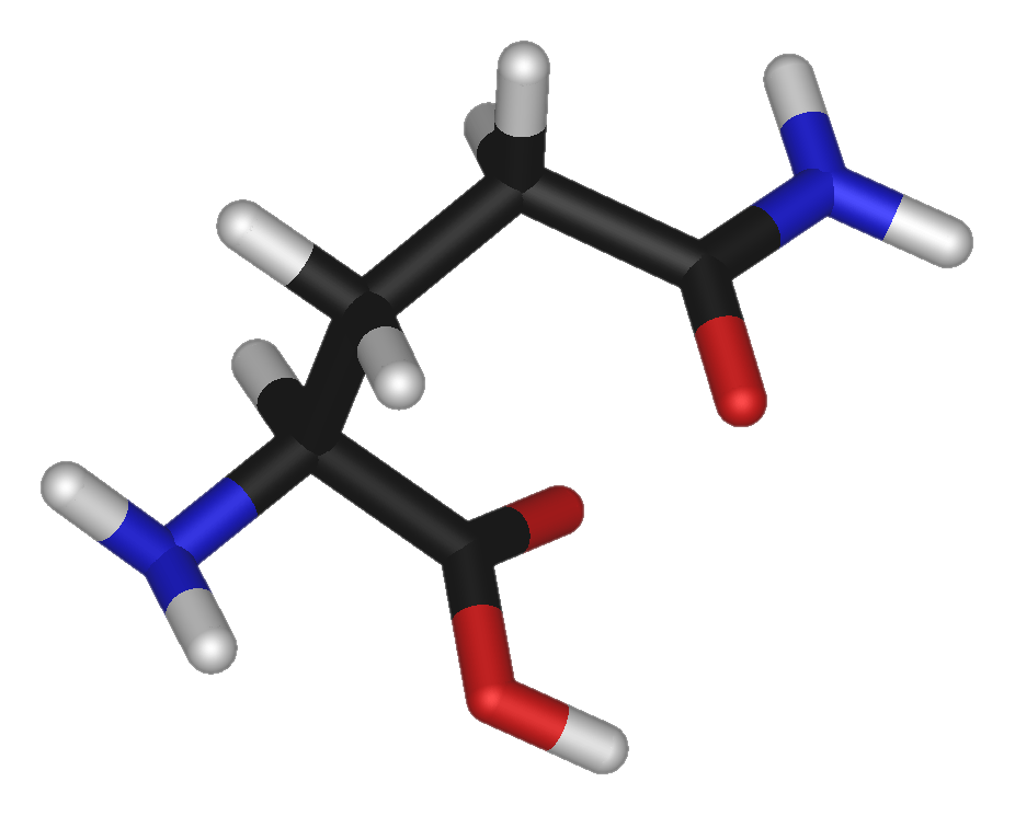 Glutamine2