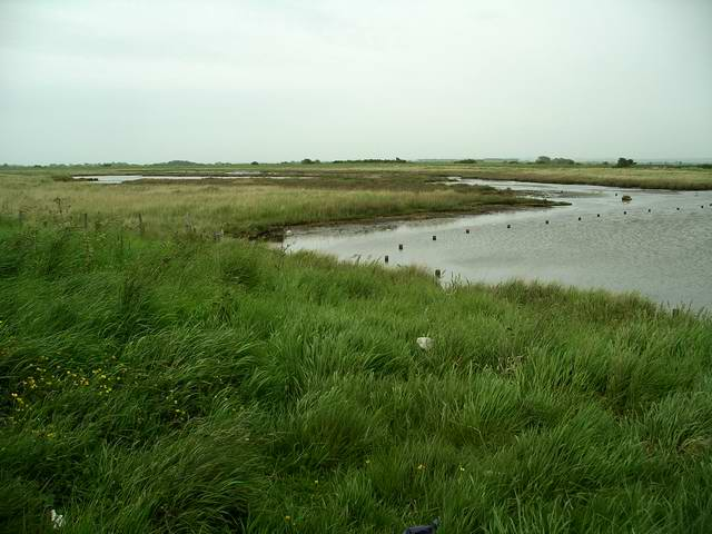 Lagoons, Tetney Marshes nature reserve - geograph.org.uk - 816662