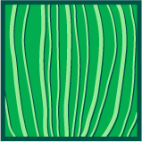Leaf morphology parallel.png