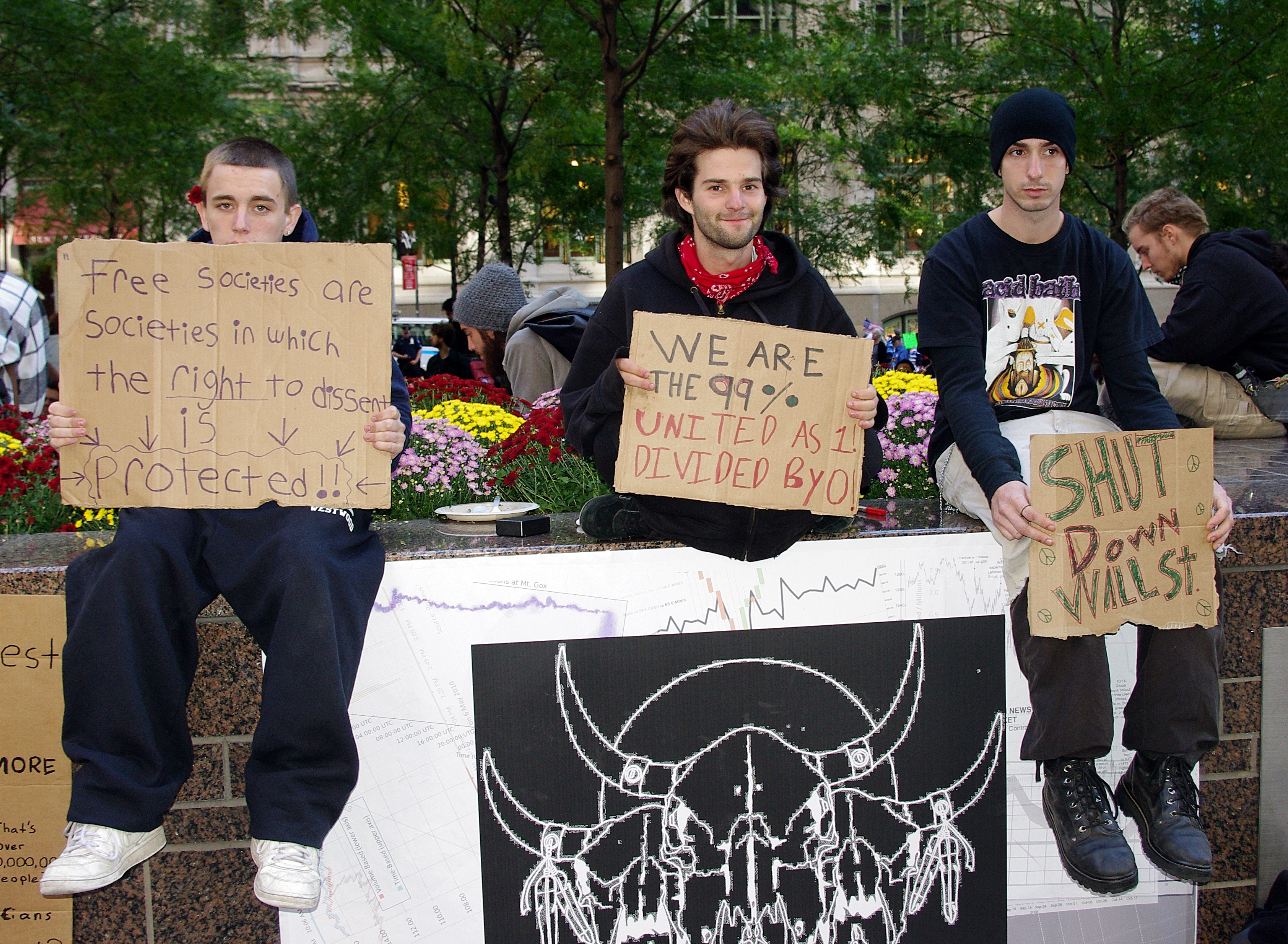 a call to occupy movement essay