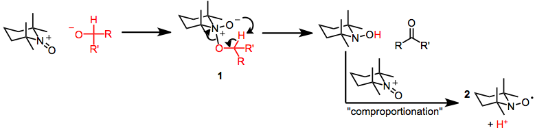 Mechanism of Oxidation The Mechanism of Oxidation of