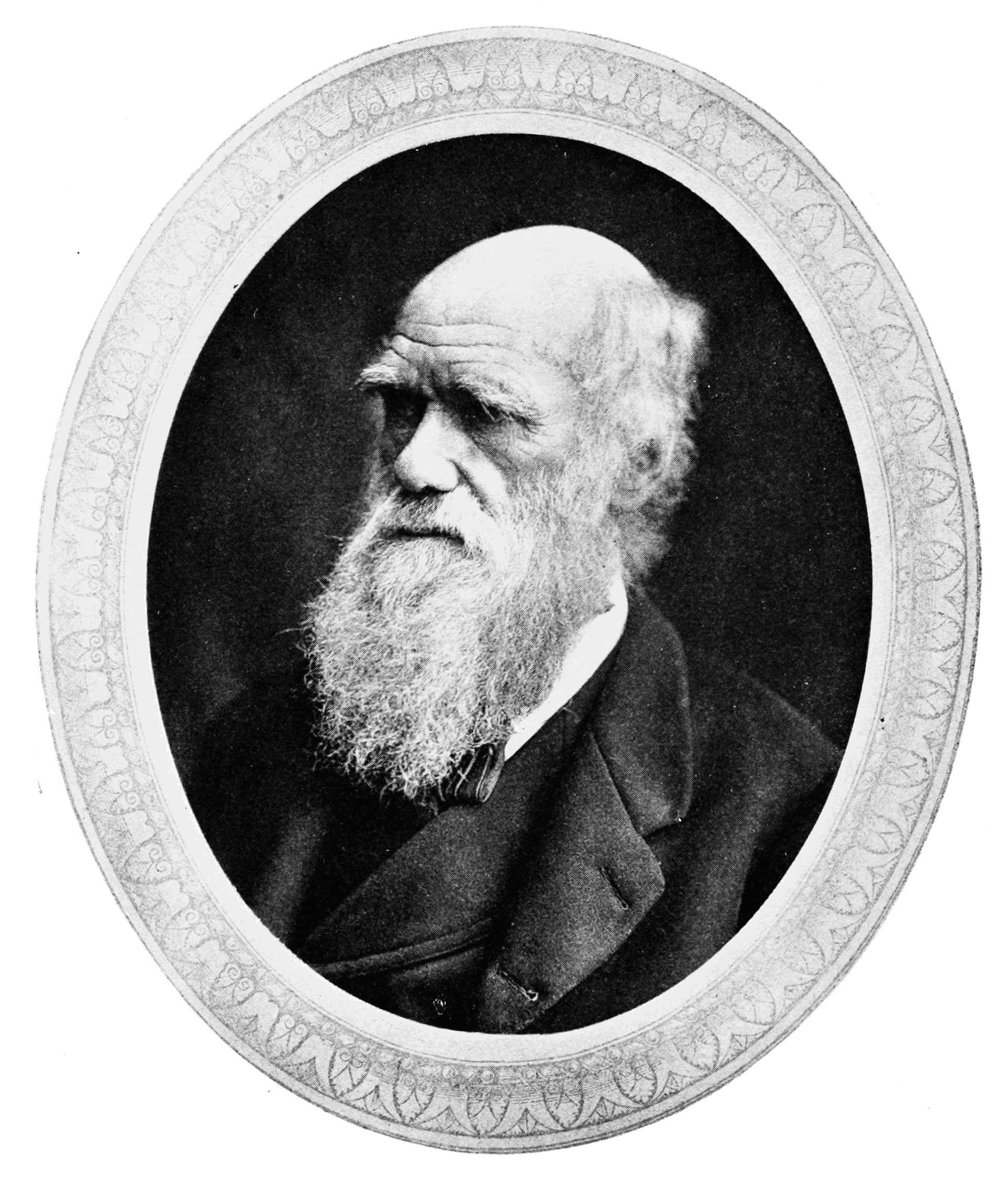 a history of biology through charles darwins works Charles darwin's theory of evolution by natural selection falls into this category,   as with most ideas, however, darwin's developed in a context other theorists  had been for some time been puzzling about the work of nature, and   published the following year as on the origin of species by means of natural  selection.