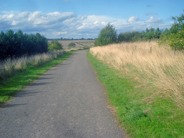 Path at the Sence Valley Forest Park - geograph.org.uk - 1494948