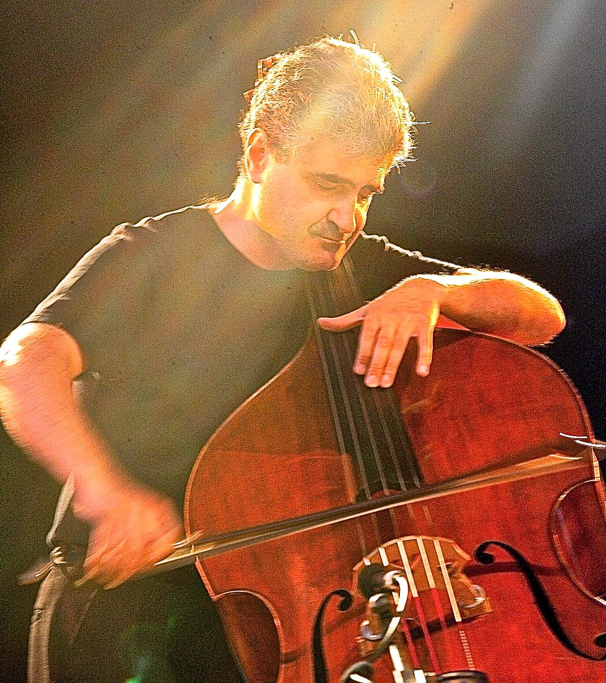 Renaud Garcia-Fons - Wikipedia