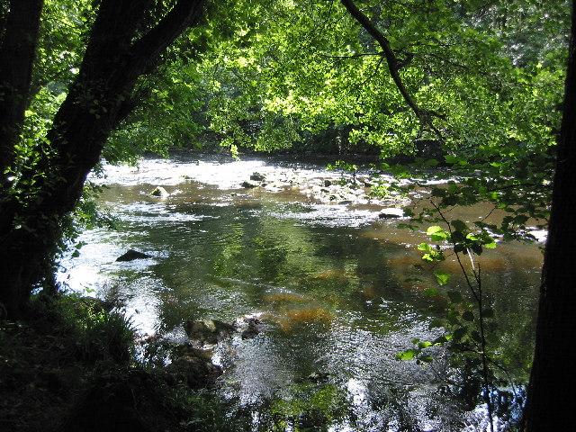 River Nidd near Knaresborough - geograph.org.uk - 28589