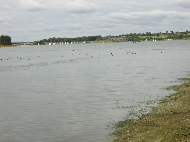 Shoreline of Reservoir - geograph.org.uk - 61006