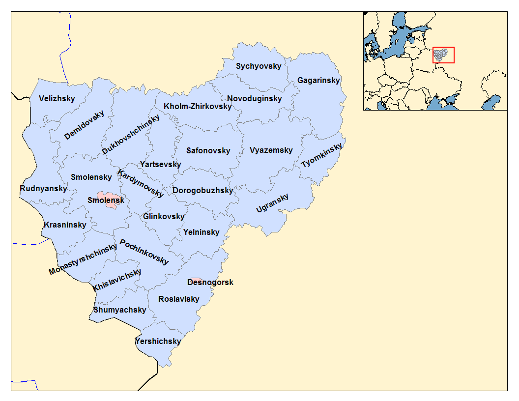 TC Demidovsky in Tula: an overview