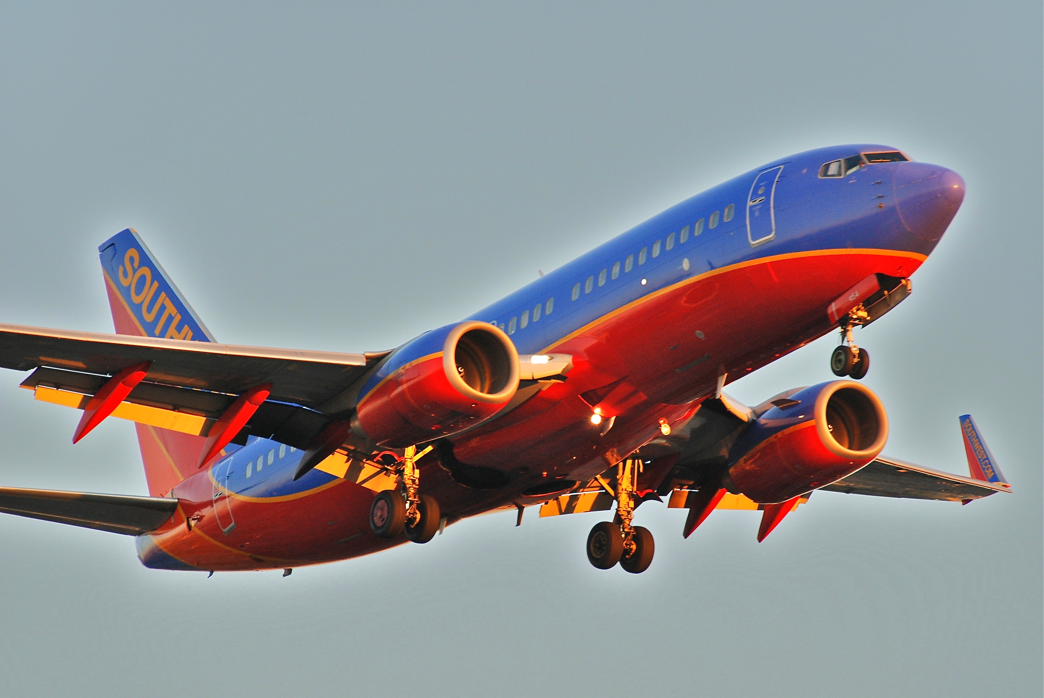 Southwest Airlines Flights To Myrtle Beach South Carolina