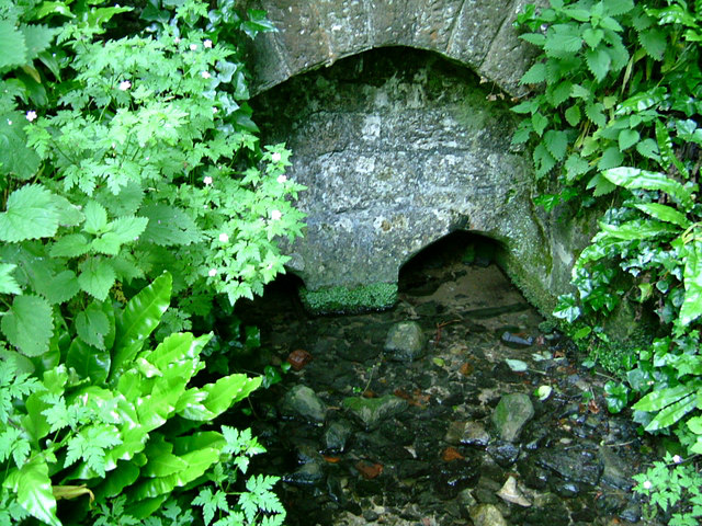 St. Aldhelm's Well, Doulting, Somerset - geograph.org.uk - 1358162