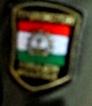 Tajik shoulder patch.jpeg