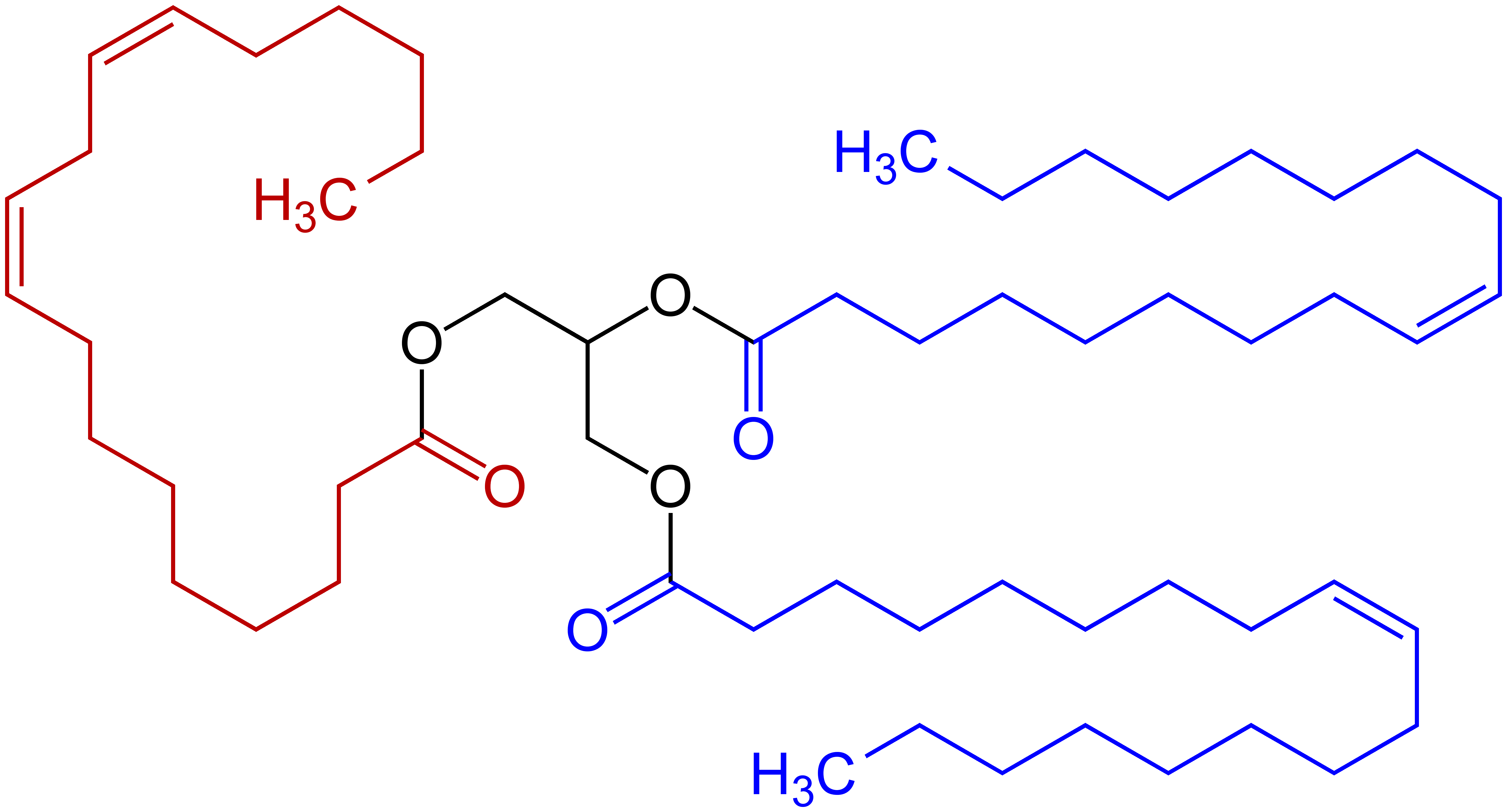 Filetriglyceride Structural Formula Example A V2g Wikimedia
