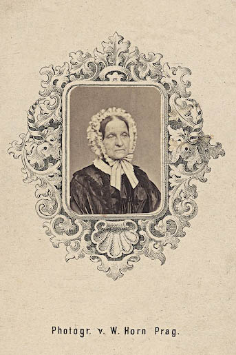 Wilhelm Horn neznama dama 1860