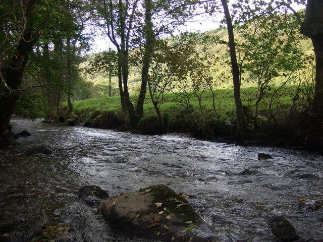 Afon Gwaun at Cilrhedyn - geograph.org.uk - 1549385