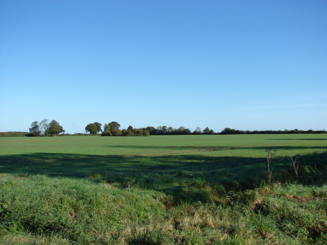 File:Arable land near Little Palgrave Hall - geograph.org.uk - 589476.jpg