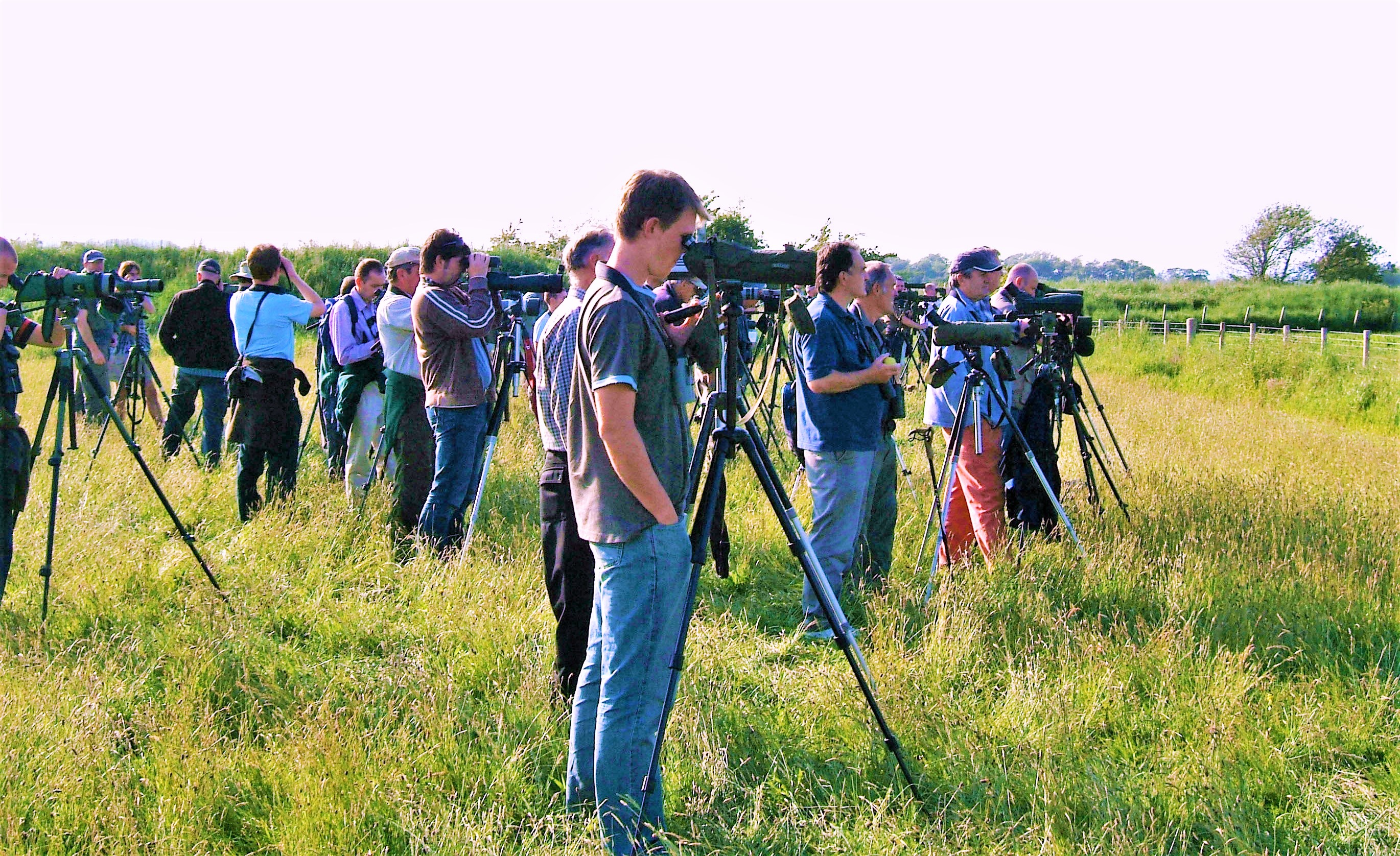 File Birders at Caerlaverock jpg - Wikimedia Commons