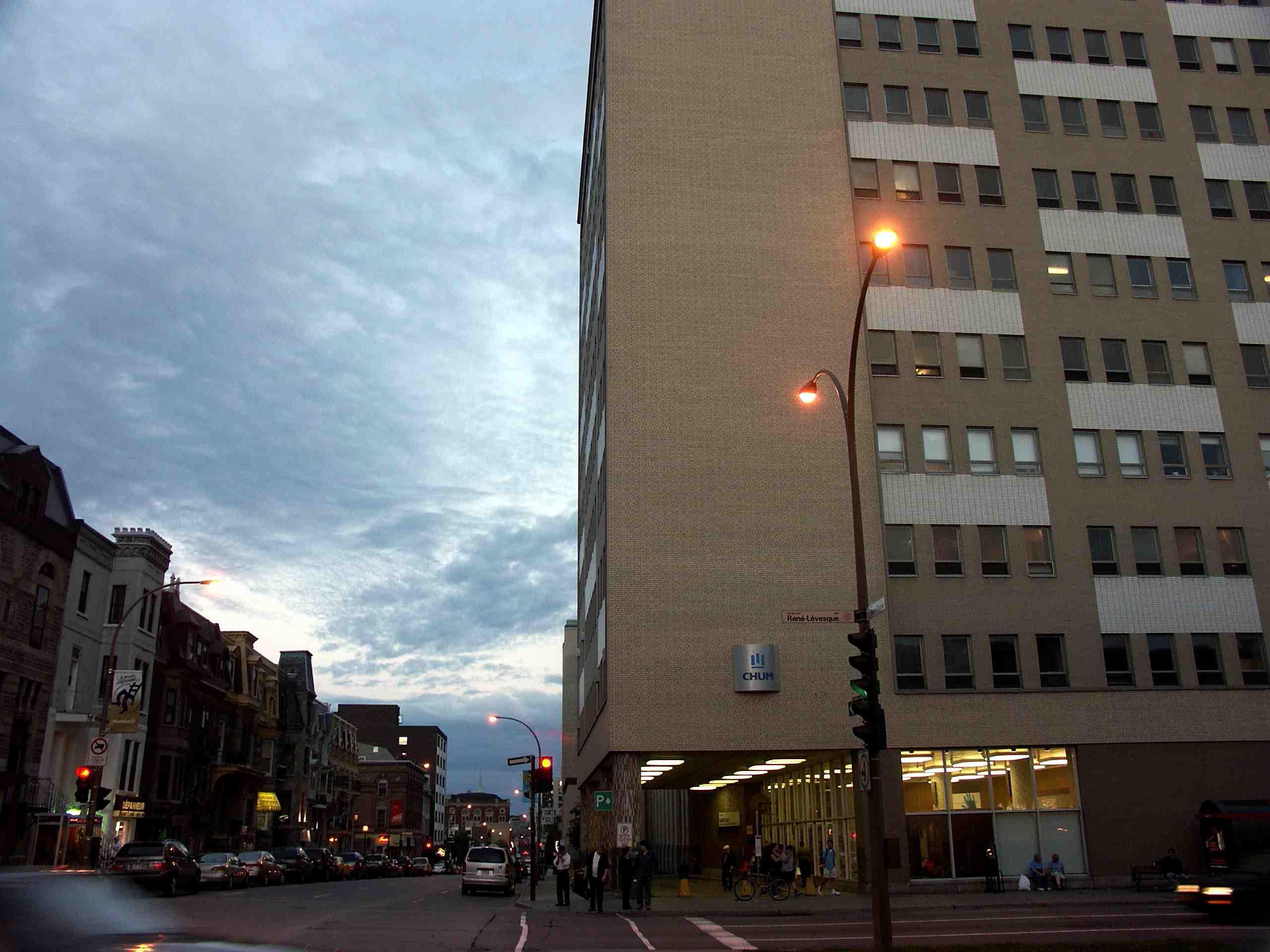 Hôpital Saint-Luc - Wikipedia