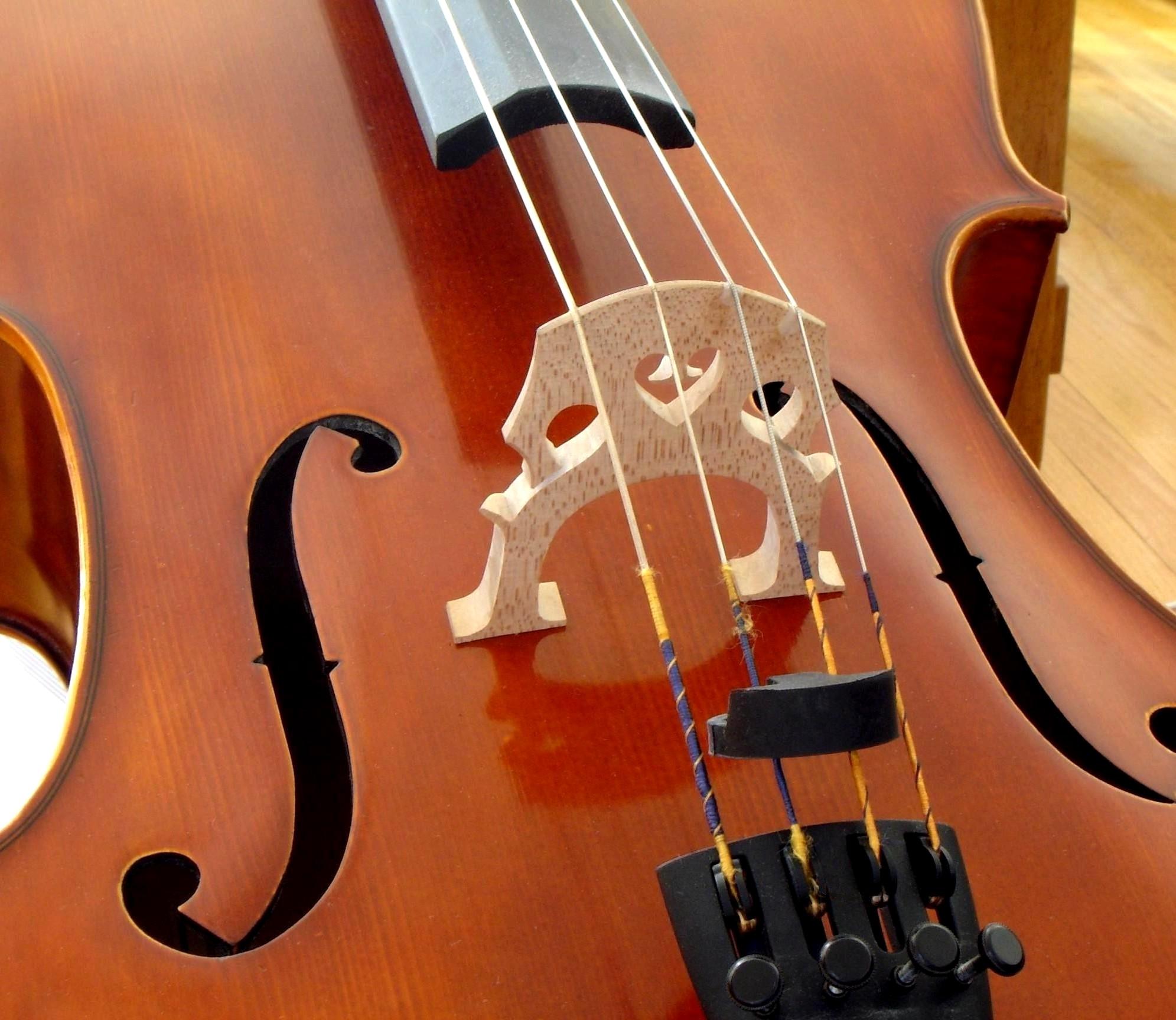 Instrumentos musicales: Clasificación, tipos de instrumento
