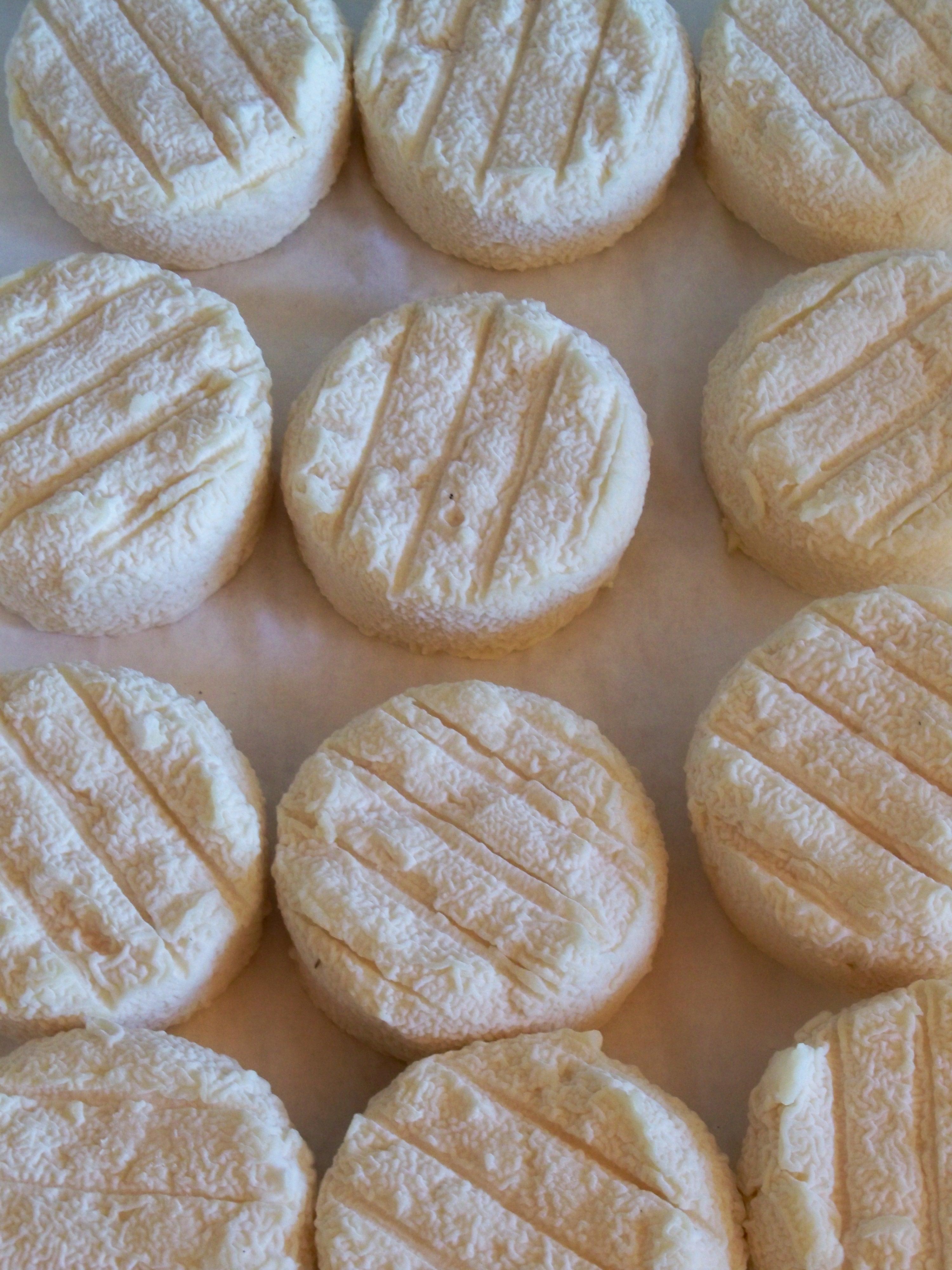 Exemples de fromages de chèvre de Provence