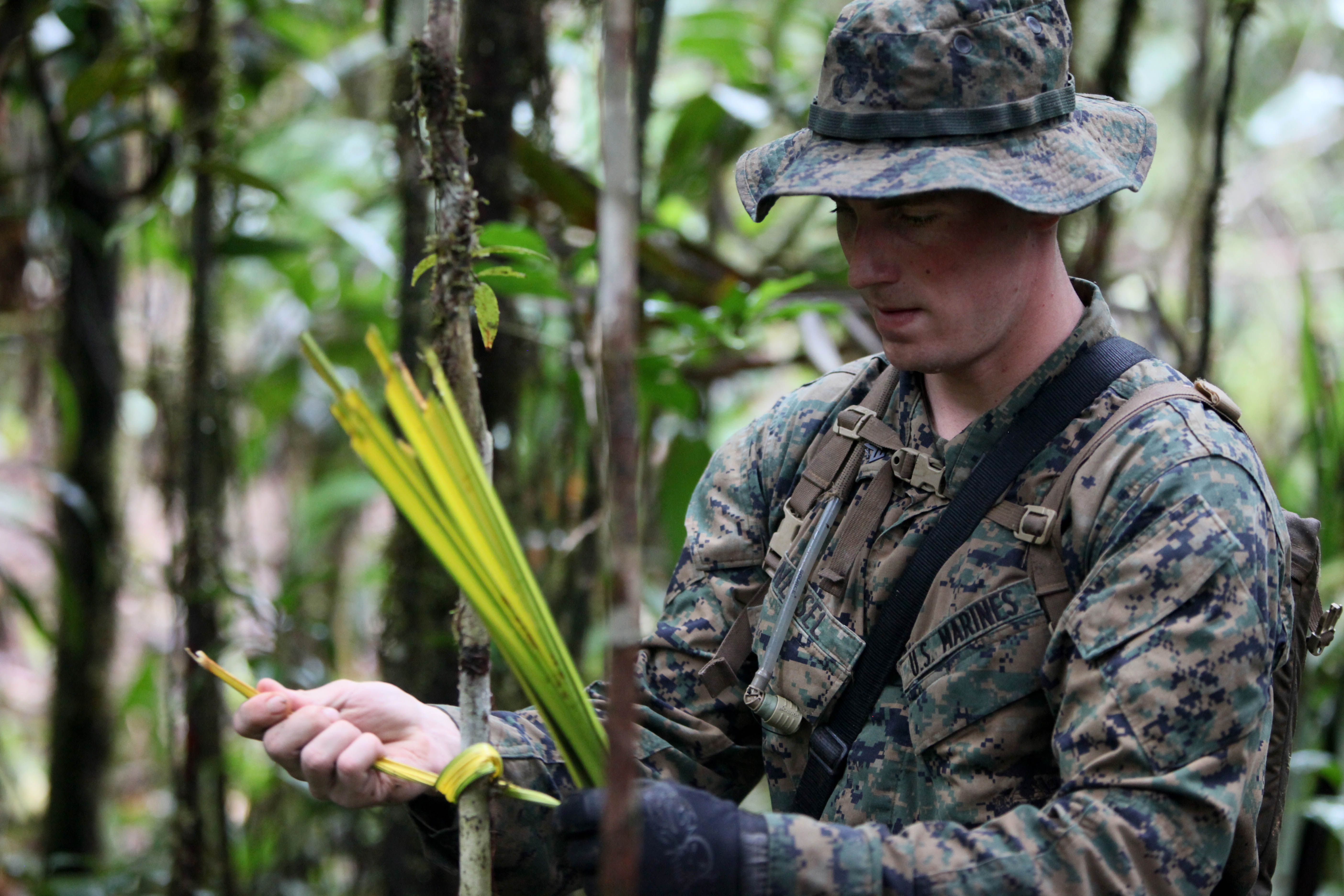 1370abf1d5d File Defense.gov News Photo 100803-M-9093S-059 - U.S. Marine Corps Sgt.  Travis D. Nessel with 3rd Assault Amphibian Battalion marks a path with  yellow palm ...