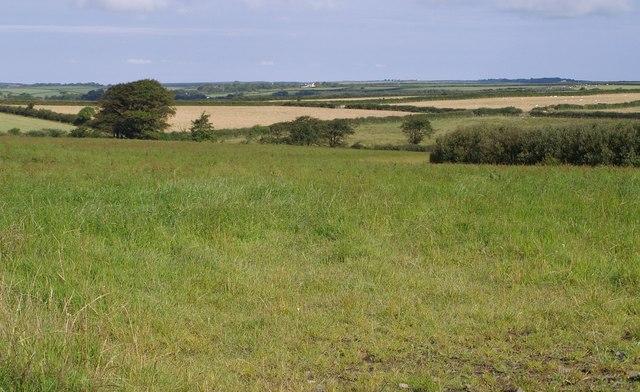 File:Field near Newlands - geograph.org.uk - 509240.jpg