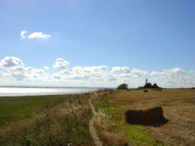 Hale Lighthouse and Mersey vista - geograph.org.uk - 40621