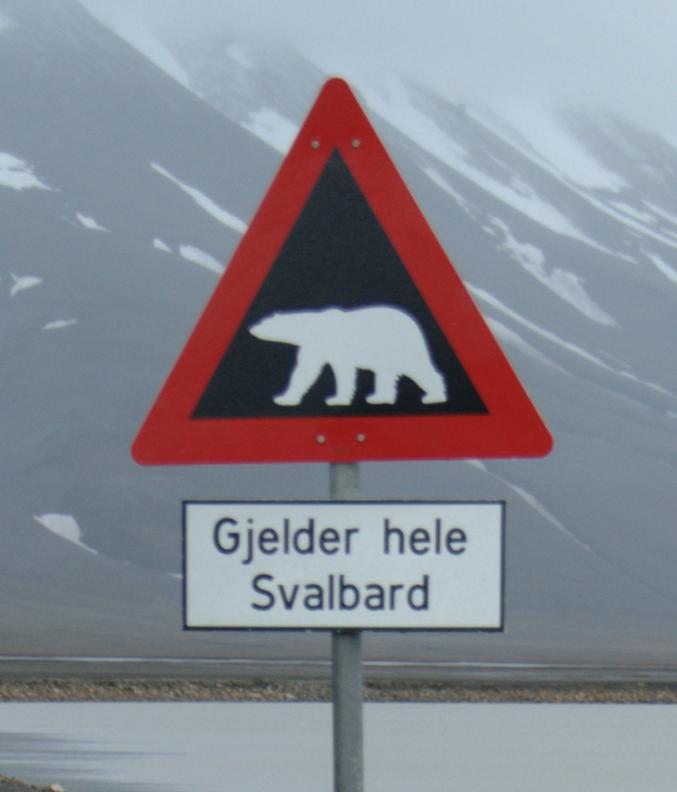 File:Isbjornskilt.png