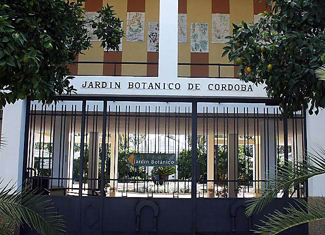 Jardin botanique royal de cordoue wikip dia Jardin botanico horarios y precios