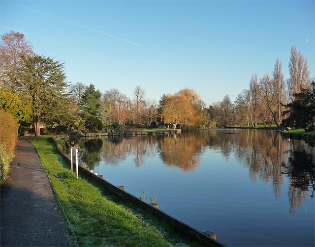Lake, Beddington Park (geograph 4294251)