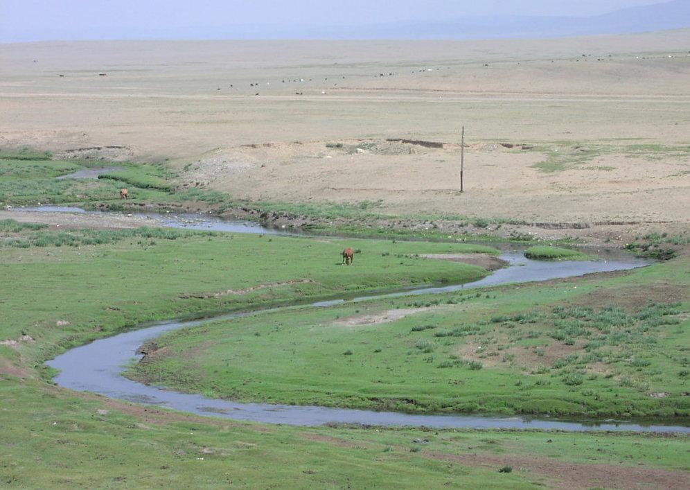 File:Mongolian steppe.jpg - Wikipedia, the free encyclopedia: en.wikipedia.org/wiki/file:mongolian_steppe.jpg