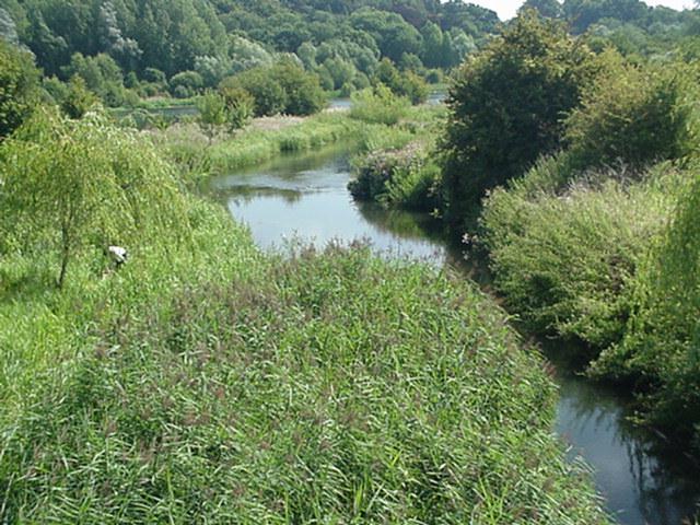 River Lea Amwell