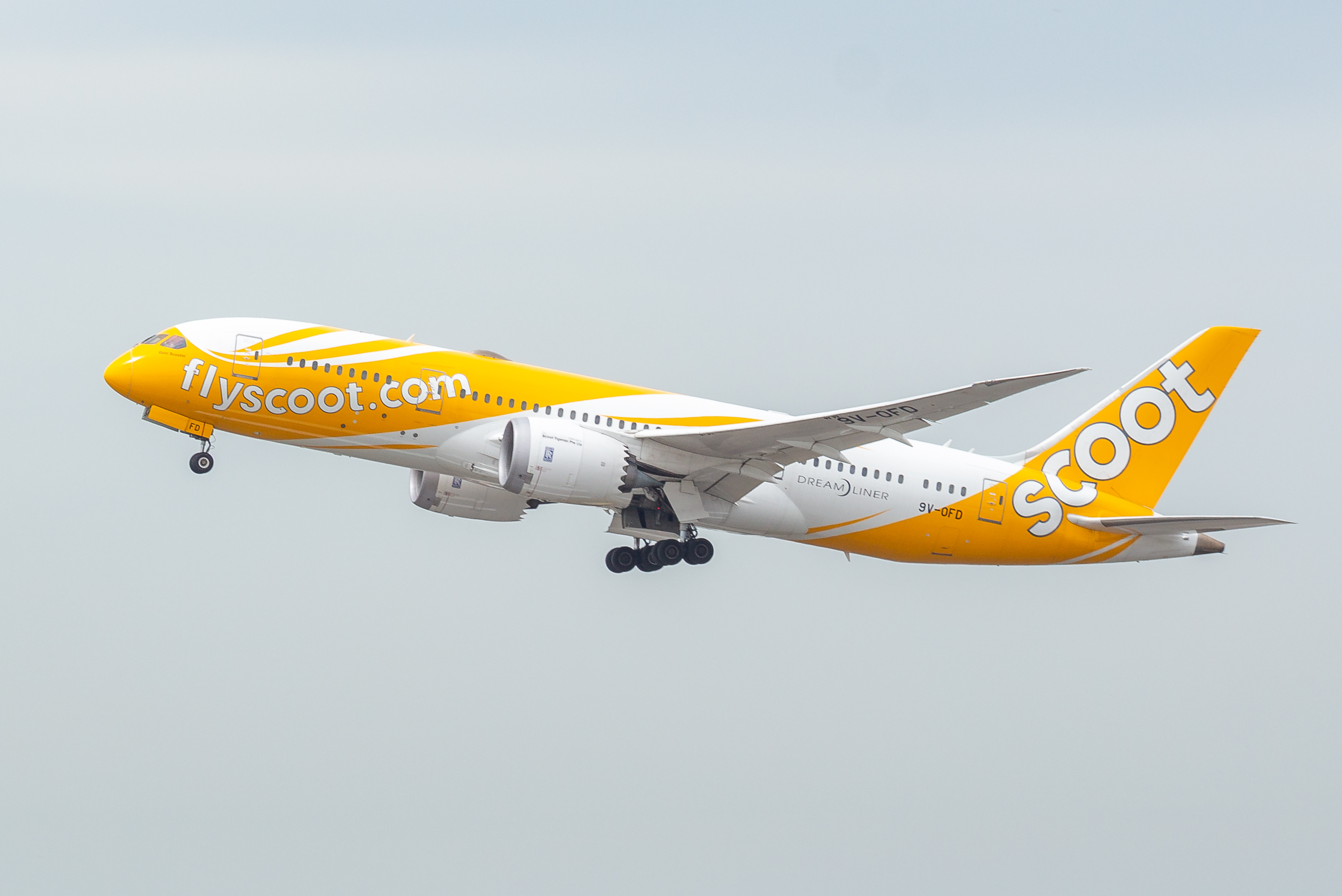 List of Scoot destinations - Wikipedia