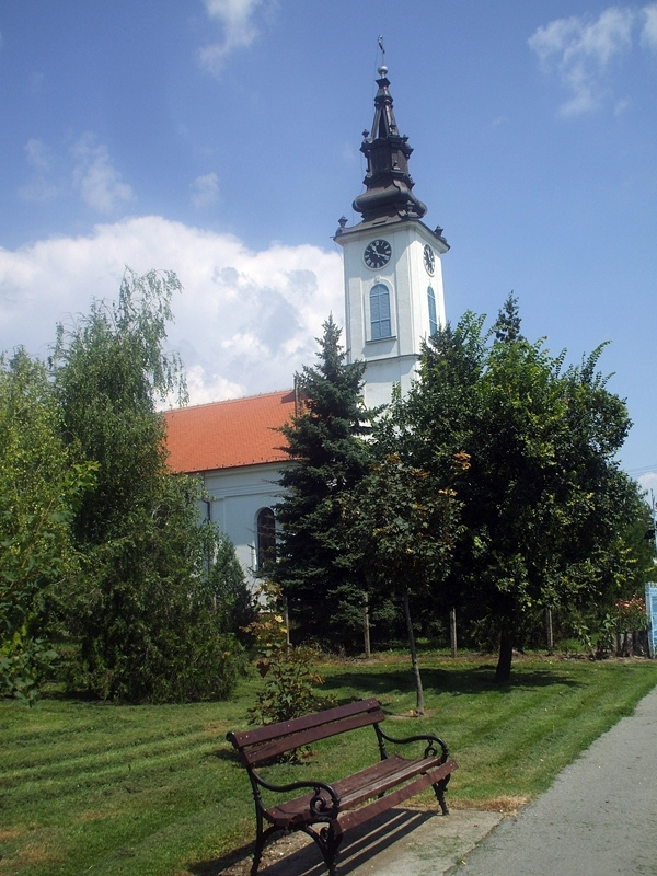 evangelical lutheran church of the augsburg confession