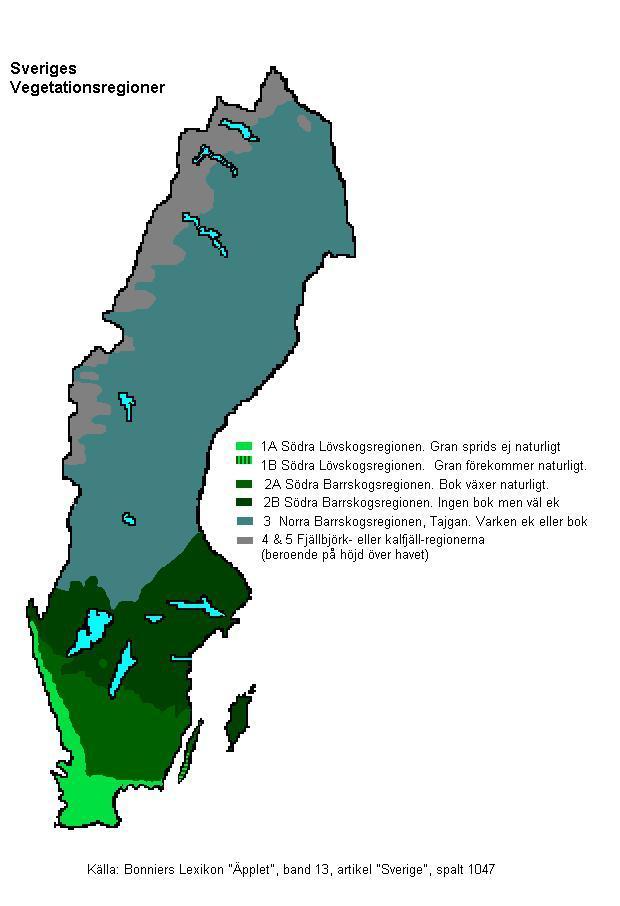 FileSweden Vegetation RegionsJPG Wikimedia Commons - Sweden vegetation map