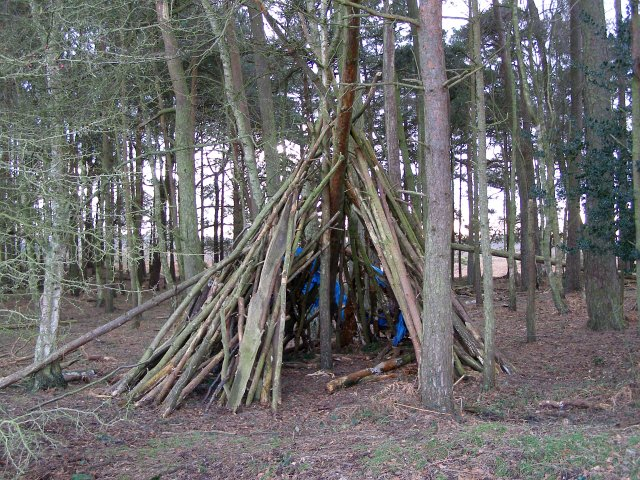 Preživljavanje u prirodi - Page 2 Temporary_shelter_in_Whitefield_Plantation,_Ibsley_Common,_New_Forest_-_geograph.org.uk_-_315169