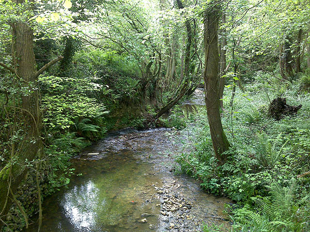 The River Lim - geograph.org.uk - 1317386