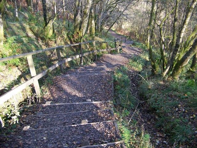 The footpath down to the Bracklinn Falls - geograph.org.uk - 1033074