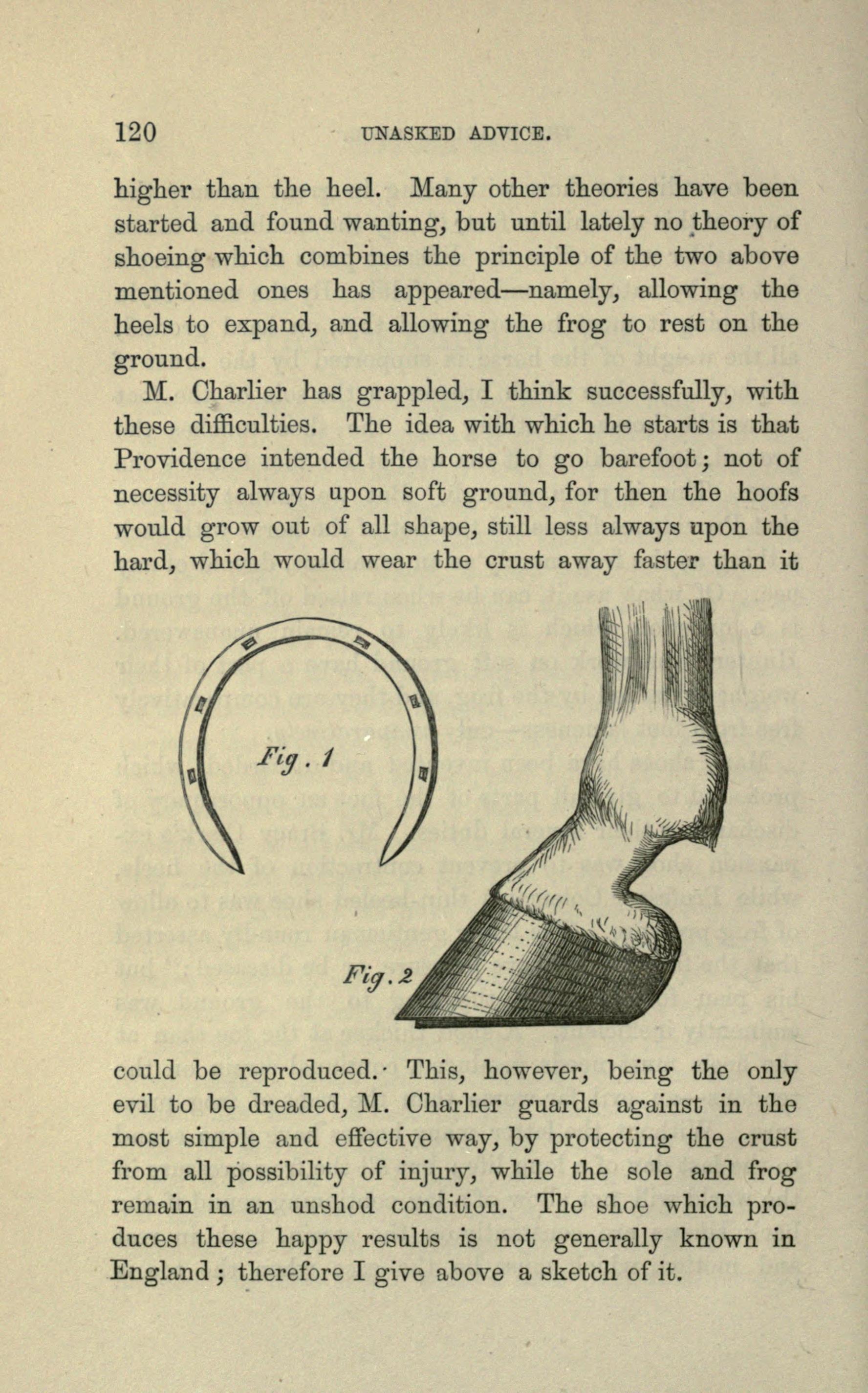 File:Unasked advice (Page 120) BHL20691413.jpg - Wikimedia Commons