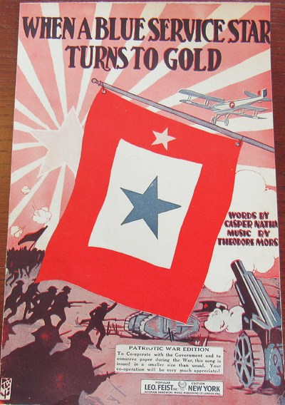 When A Blue Service Star Turns To Gold Wikipedia