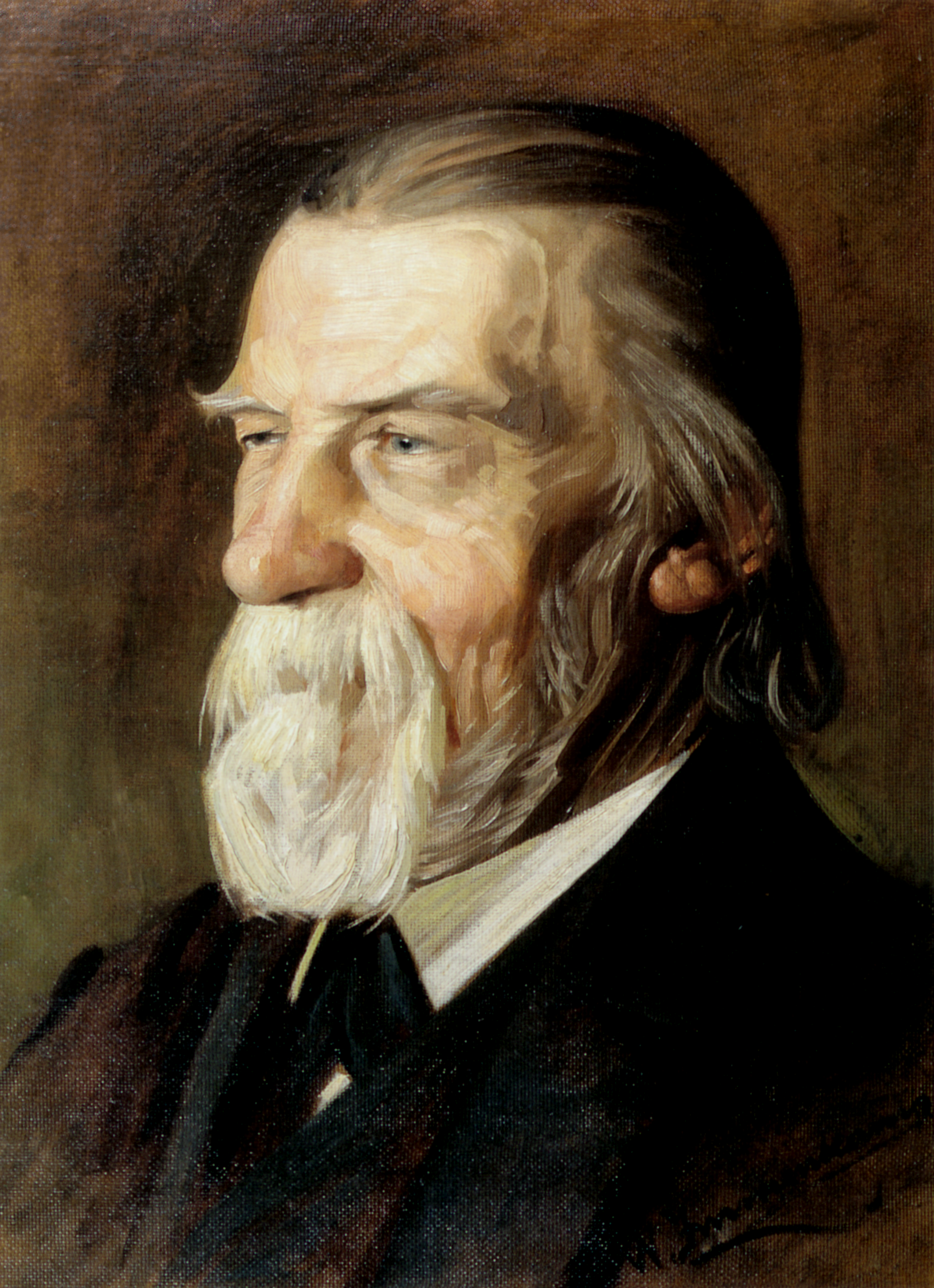Picture of an author: Wilhelm Raabe